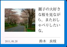 麗子の大好きな桜を見ながら、またおしゃべりしたいな。